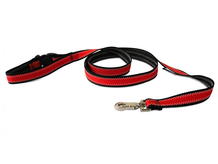 Hooley Dog Leash-39