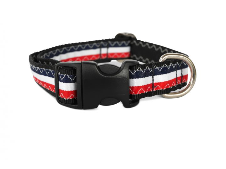 Hooley Dog Collar-852